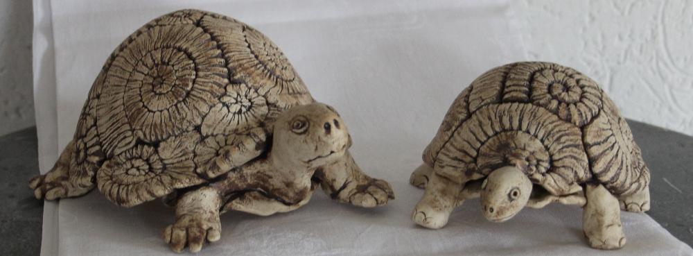 die sucht nach ammoniten  tingel keramik
